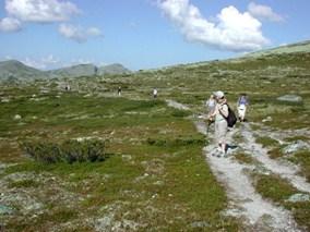 Bilde fra tur i fjellet i Ringebu