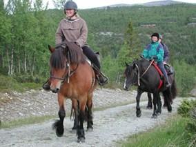 Sommer Aktivitäten Trabelia Hyttegrend Og Camping