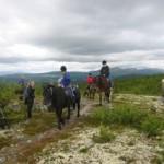 Hesteridning i Gudbrandsdalen.